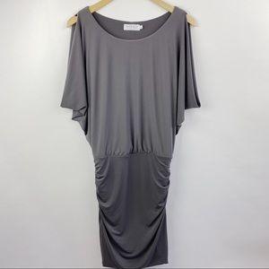 Velvet by graham & Spencer gray bodycon dress
